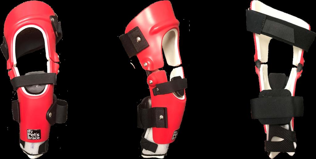 Knee Braces for Rear Legs 2